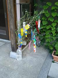 Tanabatah302